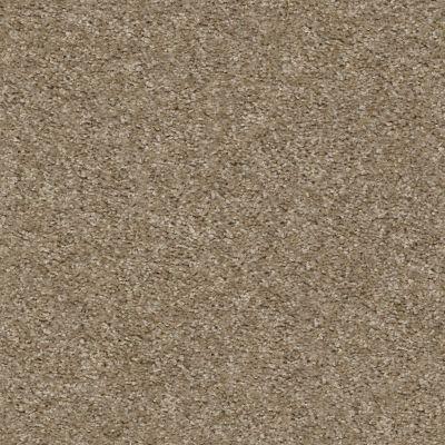 Shaw Floors Value Collections Valiant Net Barnwood 00700_5E387