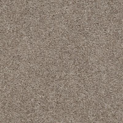 Shaw Floors Value Collections Valiant Net Bashful 00790_5E387