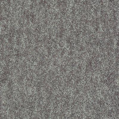 Shaw Floors Take Away (s) Shadow 00502_5E426