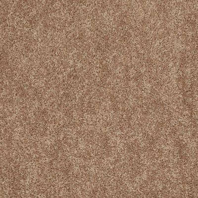 Shaw Floors Take Away (s) Dakota 00714_5E426