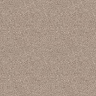 Shaw Floors Foundations Harmonious II Heirloom 00803_5E437