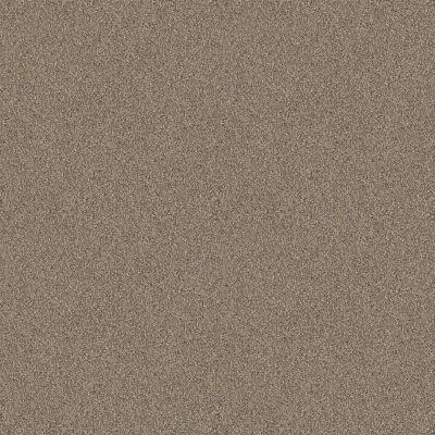 Shaw Floors Foundations Influencer Raw Wood 00200_5E443