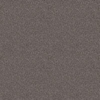 Shaw Floors Foundations Influencer Desert View 00503_5E443