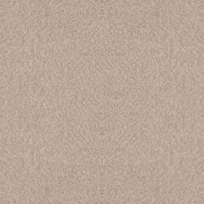 Shaw Floors Foundations Alluring Canvas Heirloom 00803_5E445