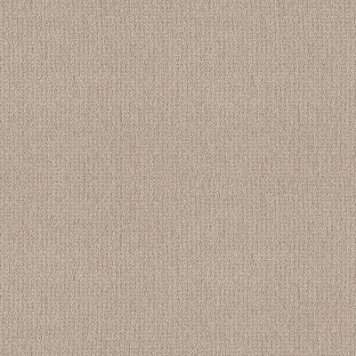 Shaw Floors Foundations Fine Tapestry Sandstone 00743_5E446