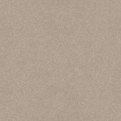 Shaw Floors Foundations Harmonious III Sandstone 00743_5E451