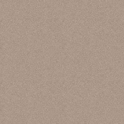 Shaw Floors Foundations Harmonious III Heirloom 00803_5E451
