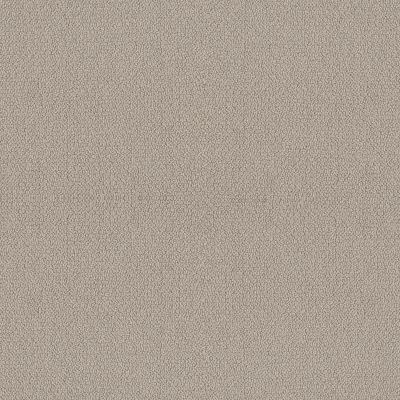 Shaw Floors Simply The Best Embellished Birch 00118_5E458