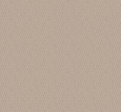 Shaw Floors Value Collections Loop De Loop Net Natural Wood 00107_5E468