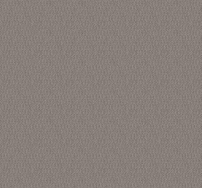 Shaw Floors Value Collections Loop De Loop Net Industrial 00505_5E468