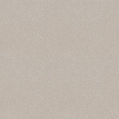 Shaw Floors Foundations Harmonious I Net Gallery Opening 00125_5E471