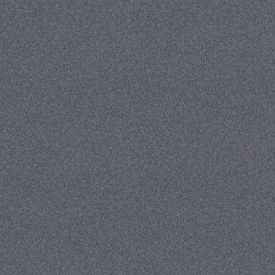 Shaw Floors Foundations Harmonious I Net Indigo Ink 00437_5E471