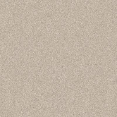 Shaw Floors Foundations Harmonious III Net Champagne Toast 00153_5E473