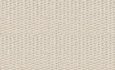 Shaw Floors Foundations Naturalistic Net Champagne Toast 00153_5E475