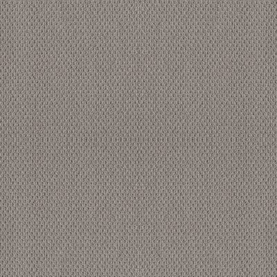 Shaw Floors Foundations Naturalistic Net Grey Fox 00504_5E475