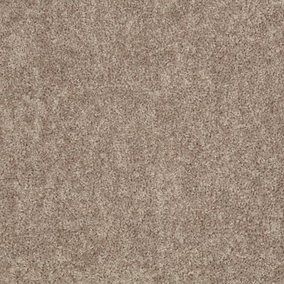 Shaw Floors Value Collections Take Away (s) Net Ridge 00702_5E479