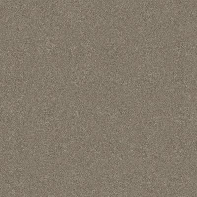 Shaw Floors Simply The Best Without Limits II Macadamia 00102_5E483