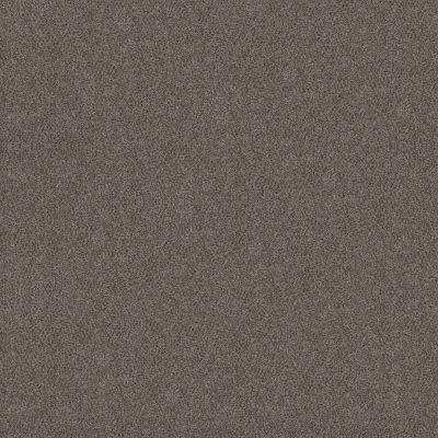 Shaw Floors Simply The Best Boundless Iv Slate Stone 00105_5E488