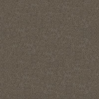 Shaw Floors Simply The Best Boundless Iv Woodcraft 00701_5E488