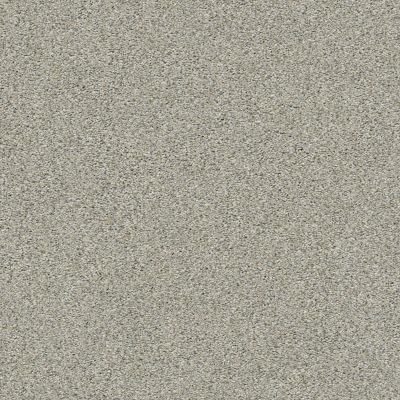 Shaw Floors Simply The Best Boundless I Net Soft Breeze 00131_5E503