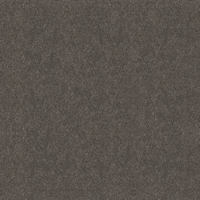 Shaw Floors Simply The Best Boundless I Net Shadow 00703_5E503