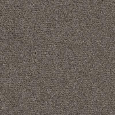 Shaw Floors Simply The Best Boundless III Net Slate Stone 00105_5E505