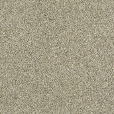 Shaw Floors Simply The Best Boundless III Net Morning Light 00140_5E505