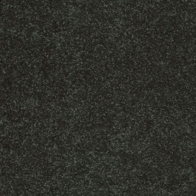 Shaw Floors Value Collections Sandy Hollow Cl II Net Lilly Pad 00320_5E510