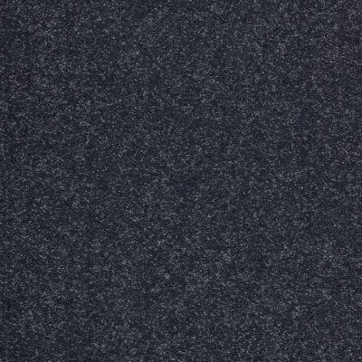 Shaw Floors Value Collections Sandy Hollow Cl II Net Dutch Boy 00422_5E510