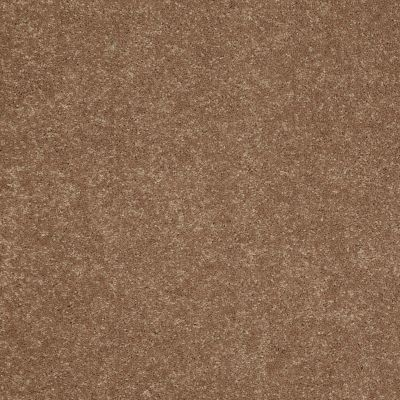 Shaw Floors Value Collections Sandy Hollow Cl II Net Windmill 00720_5E510