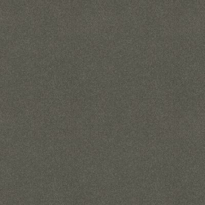 Shaw Floors Value Collections Sandy Hollow Cl III Net Slate 00502_5E511