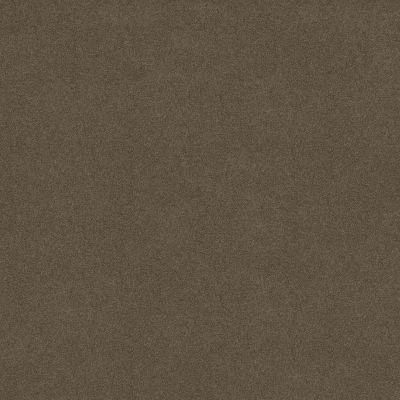 Shaw Floors Value Collections Sandy Hollow Cl III Net Castle Rock 00521_5E511