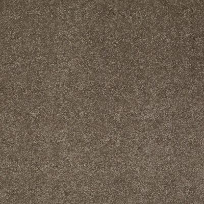 Shaw Floors Value Collections Sandy Hollow Cl Iv Net Castle Rock 00521_5E512
