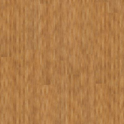 Shaw Floors 5th And Main Thoroughly Mo Elite Suburban 00768_5M207