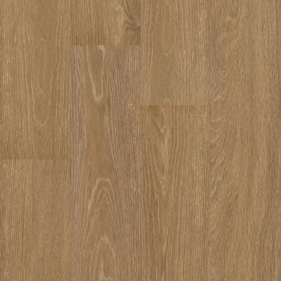 Shaw Floors 5th And Main Symbiotic 12 Reed 00256_5M302