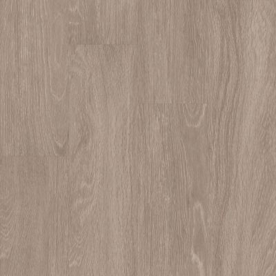 Shaw Floors 5th And Main Symbiotic 12 Plateau 00775_5M302