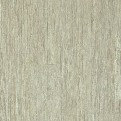 Shaw Floors 5th And Main Symbiotic 20 Grain 00116_5M303