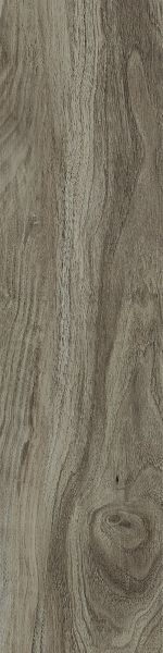 Shaw Floors 5th And Main Symbiotic 20 Sparrow 00568_5M303