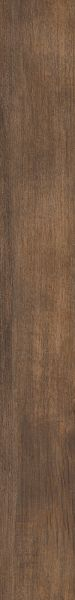 Shaw Floors 5th And Main Symbiotic 30 Thicket 05019_5M304