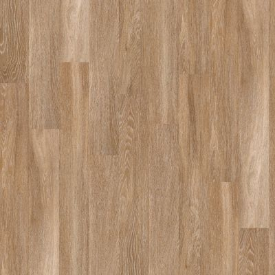 Shaw Floors 5th And Main Rapid Response 20 Motif 00235_5M307