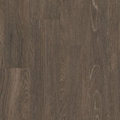 Shaw Floors 5th And Main Symbiotic 5.0 Batik 00774_5M308