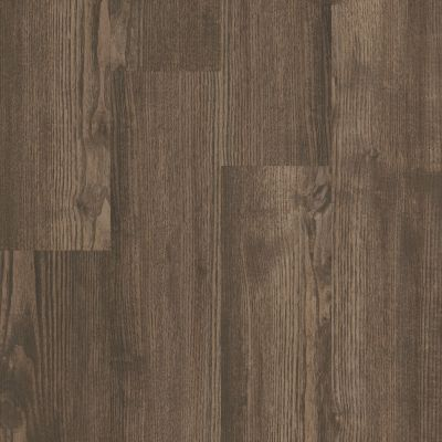 Shaw Floors 5th And Main Symbiotic 5.0 Sweetgum 07008_5M308