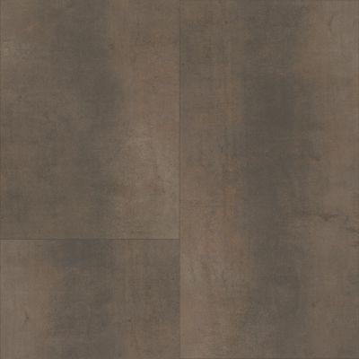 Shaw Floors 5th And Main Ferrous Foil 00750_5M311