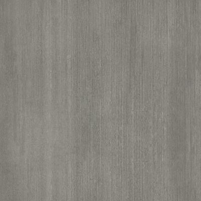 Shaw Floors 5th And Main Cimmerian 5.0 Delphi 00507_5M317