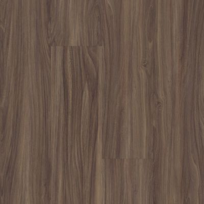 Shaw Floors 5th And Main Mettle Cinnami 00150_5M500