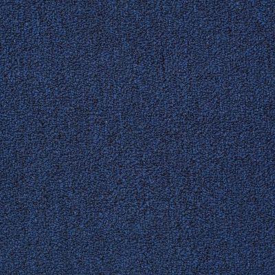 Philadelphia Commercial Mercury Carpets Velocity Navy Seal 00031_6832D