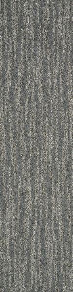 Shaw Floors Dynamic Vision Ground Fog 00500_6E001