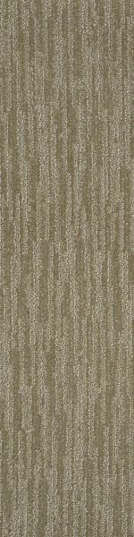Shaw Floors Dynamic Vision Menswear 00700_6E001