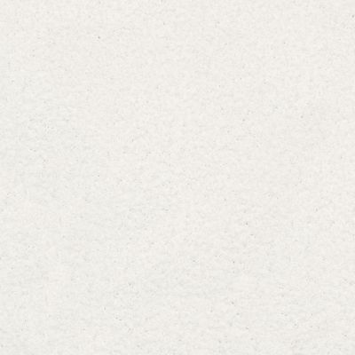 Shaw Floors Plume Perfect Dandelion 00100_6E004
