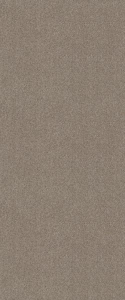 Shaw Floors Tri-tone Feathered 00102_6E008